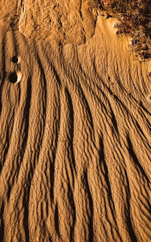 Desert Abstract 1
