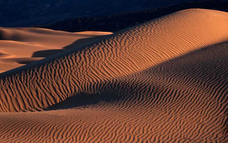 Sensual Dune