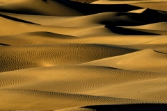 A Sea of Dunes