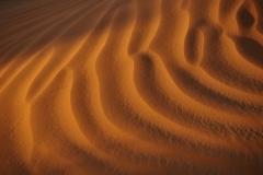 Dune Noir